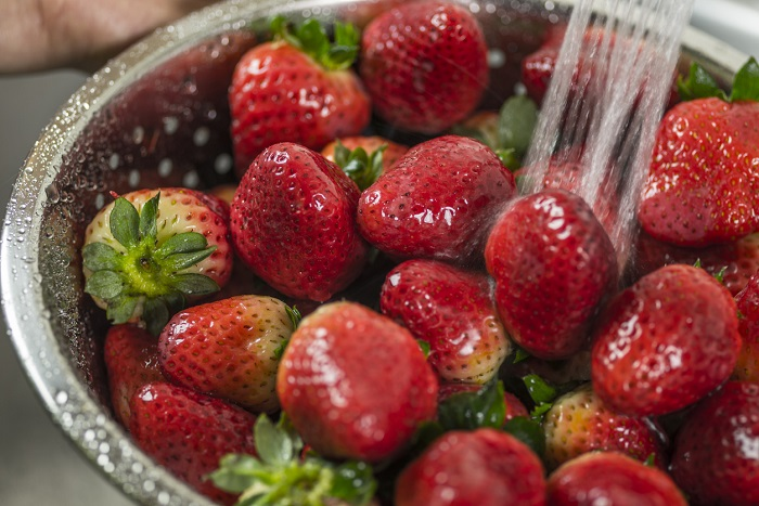 Washing strawberries in kitchen sink.