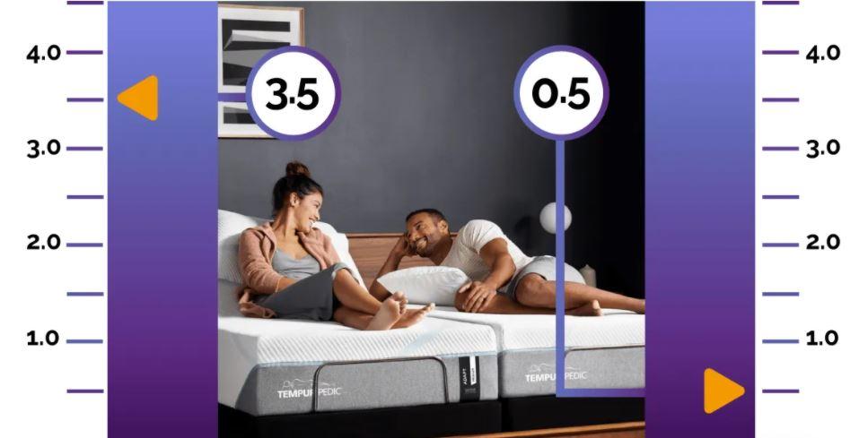 BedFit sleep report