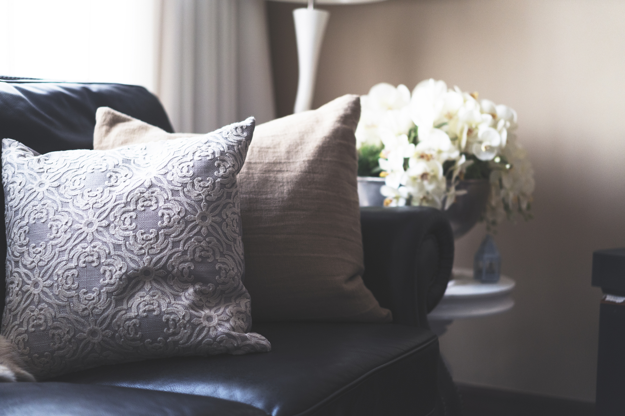 Spruce Up Your Leather Couch To Make It Feel Cozy Economy Furniture