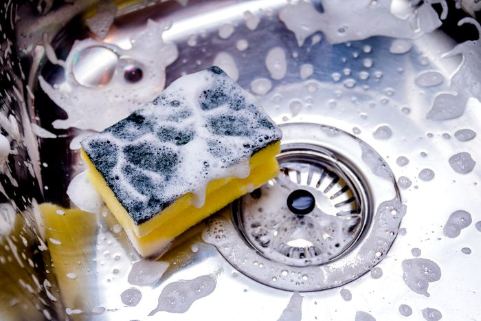 A stainless steel sink with a soapy sponge in the bottom.
