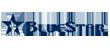 Bluestar logo image