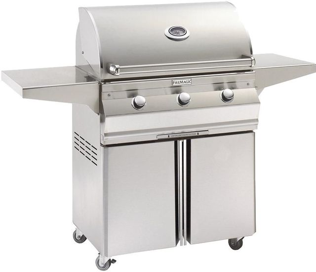 Fire Magic® Choice Collection Portable Grill-Stainless Steel-C430S-1T1P-96