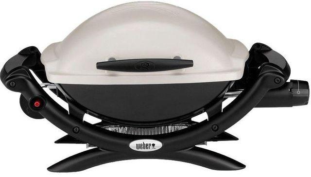 Weber® Q® 1000™ Titanium Gas Grill-50060001