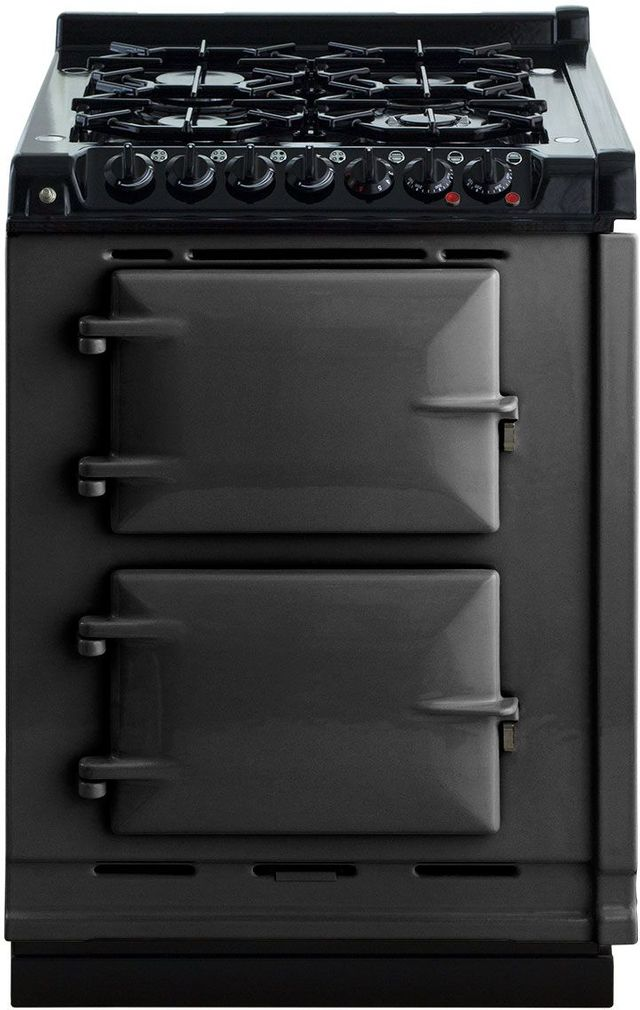 """AGA 24"""" Pewter Integrated Dual Fuel Range-TCDCLPM-PWT"""