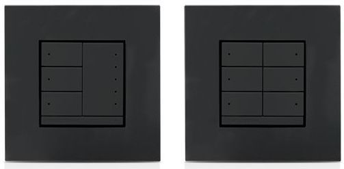 Crestron® In-Wall 2-Channel Switch-Anthracite-CLWI-1SW2EX-ANTH