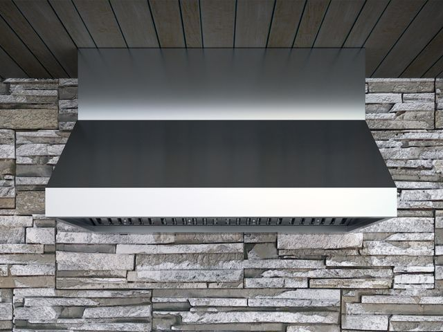 """Zephyr Pro Collection Cypress 48"""" Outdoor Pro Style Wall Ventilation-Stainless Steel-AK7848BS"""