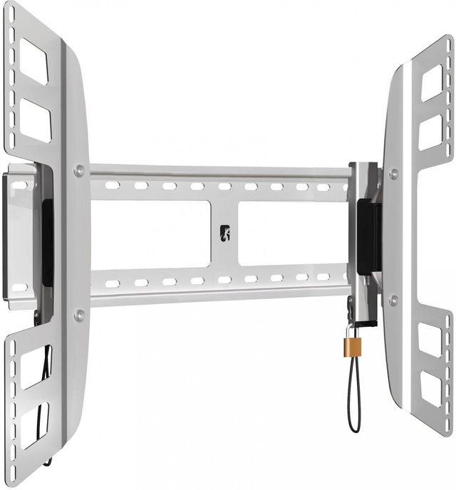 Salamander Designs® X-Large Flexo 100 Wall Mount-Silver-FX100/XL
