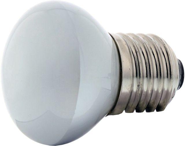 Zephyr Incandescent Bulb-Z0B0018