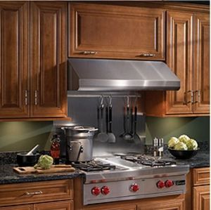 """Broan Elite E64000 Series 48"""" Under Cabinet Wall Ventilation-Stainless Steel-E6448SS"""