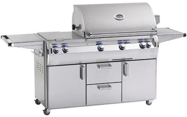 Fire Magic® Echelon Diamond Collection A Series Portable Grill-Stainless Steel-E790s-4EAN-71