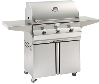 Fire Magic® Choice Collection Portable Grill-Stainless Steel-C540S-1T1P-96