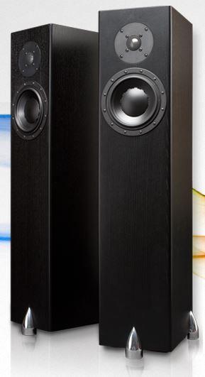 Totem Acoustics High-Fidelity Floor Standing Speaker-Forest