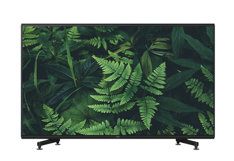 Televisions and Video