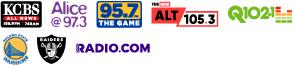 Steiny logos