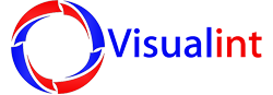 Visualint logo